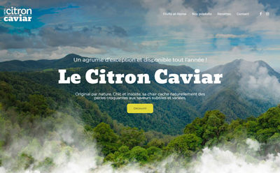 Le Citron Caviar